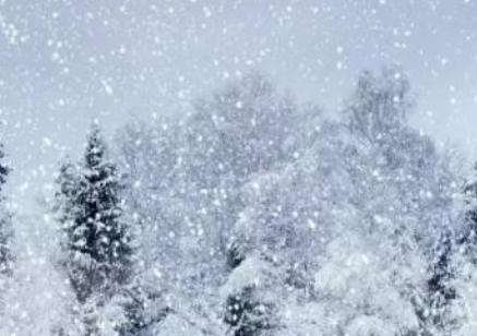 描写大雪的句子