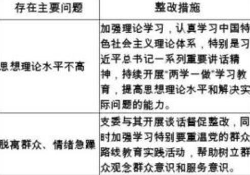 党员检视问题清单和整改措施领导干部