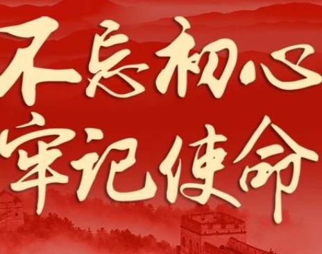"""2019""""不忘初心、牢记使命""""主题教育工作总结报告"""