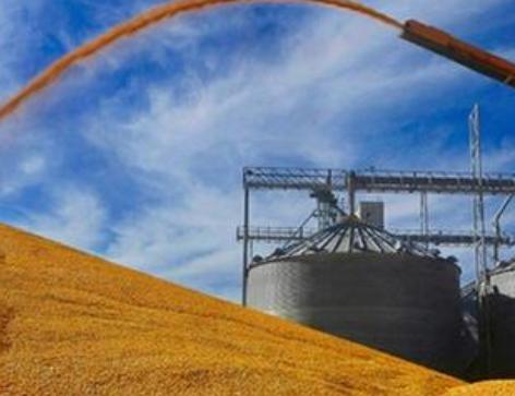 China正stay成为全球第一粮食进口大国